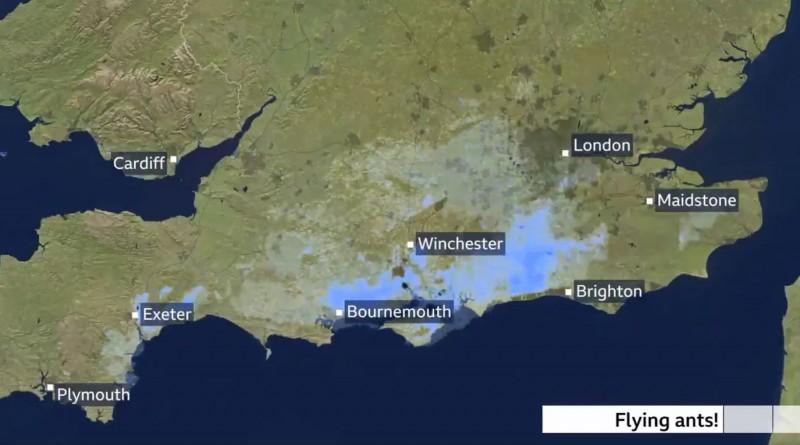 英國南部上空遭飛蟻入侵,氣象雷達竟誤認為是帶著降雨的雲朵。(圖擷自@SimonOKing推特)