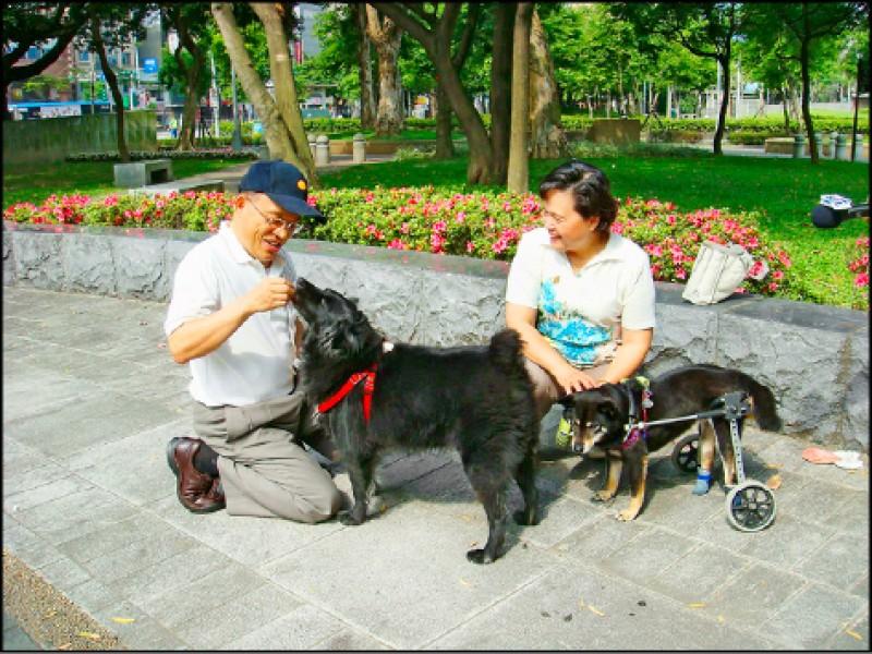 蘇貞昌與夫人詹秀齡有空時也會帶著兩狗出門散步。(圖片提供/蘇巧慧)