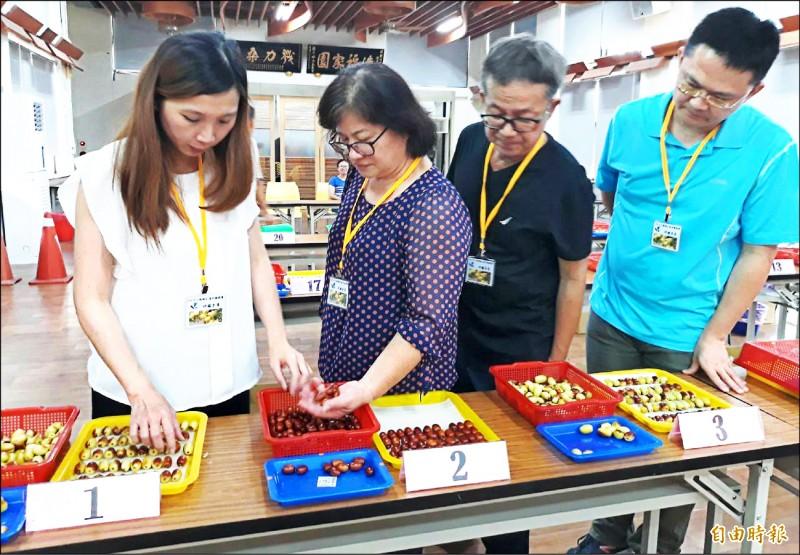 評審依據紅棗的包裝管理與重量、果實大小、果形外觀、甜度、肉質與風味等項目評分。(記者彭健禮攝)