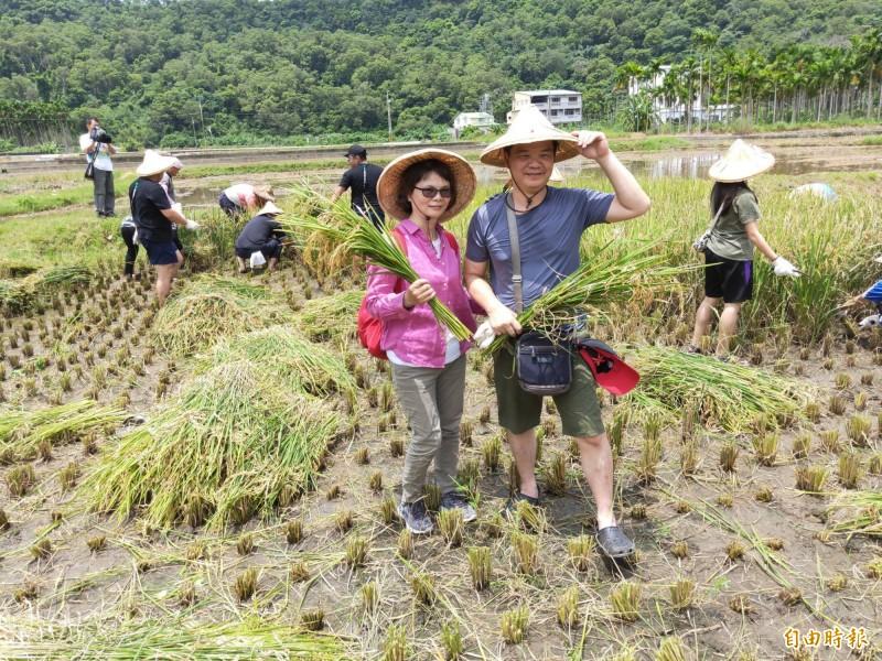「玩里山-鯉魚社區企業認購暨割稻體驗活動」,鼓勵支持在地小農。(記者蔡政珉攝)