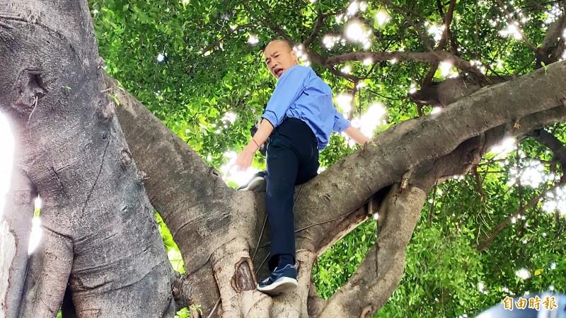 高雄市長韓國瑜爬樹勘水情。(記者黃旭磊攝)