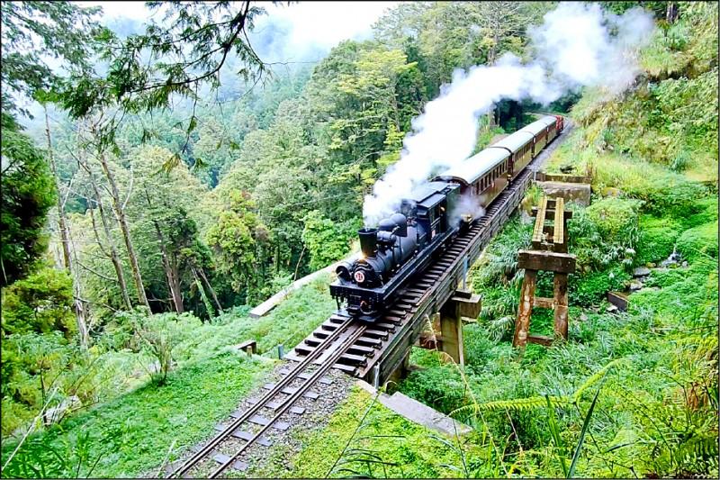 阿里山蒸氣主題檜木列車。 (廖遠橋提供)