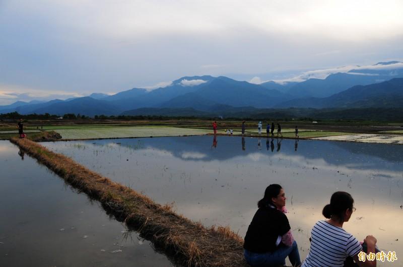 最近二期稻作即將插秧,放滿水的水田倒影是中央山脈,一九三線經過花東縱谷,在玉里德武到樂合段到處都是這樣的景色。(記者花孟璟攝)