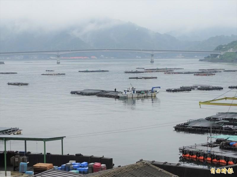 愛媛縣宇和島市的魚類養殖十分興盛。(記者林翠儀攝)