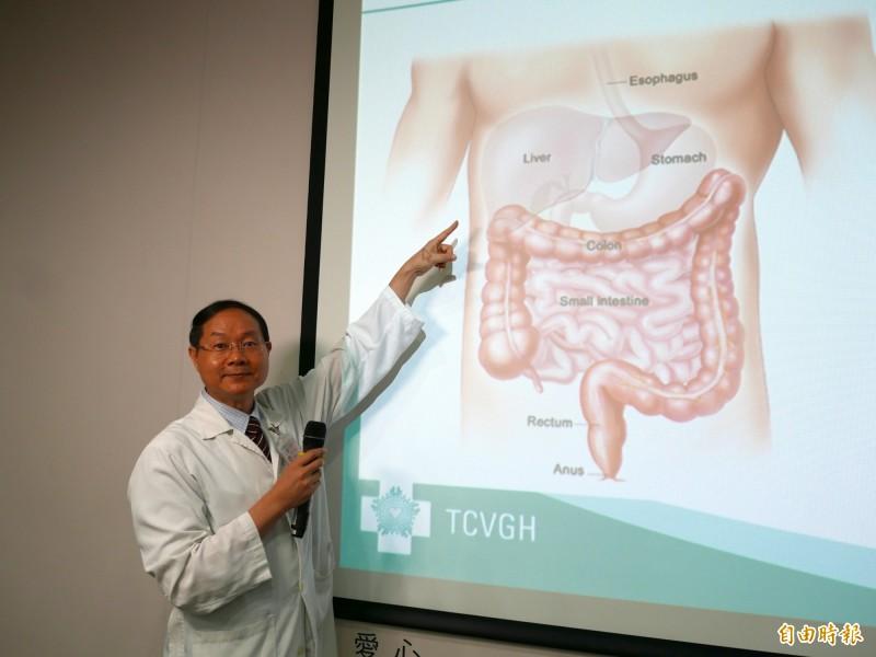 肝是沈默的器官,位於右上腹部。(記者蔡淑媛攝)