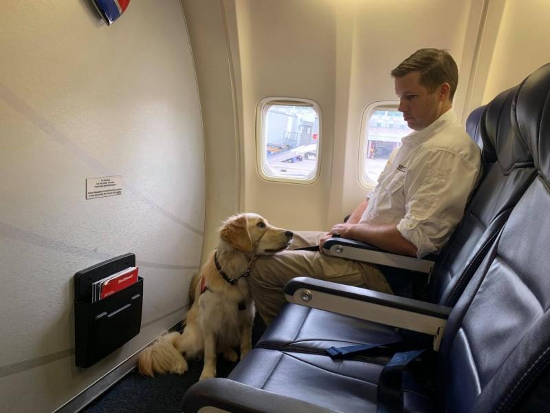 德州衛理醫療保健公會派出2隻「治癒犬」前往陪伴受害者,給予他們情感上的安慰。(圖擷取自臉書@Methodist Healthcare System)