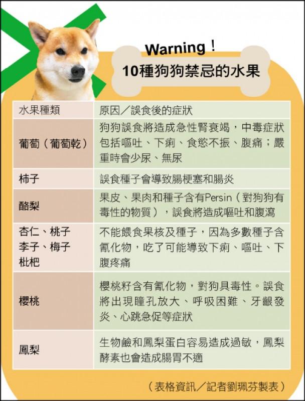 10種狗狗禁忌的水果。(表格資訊/記者劉珮芬製表)