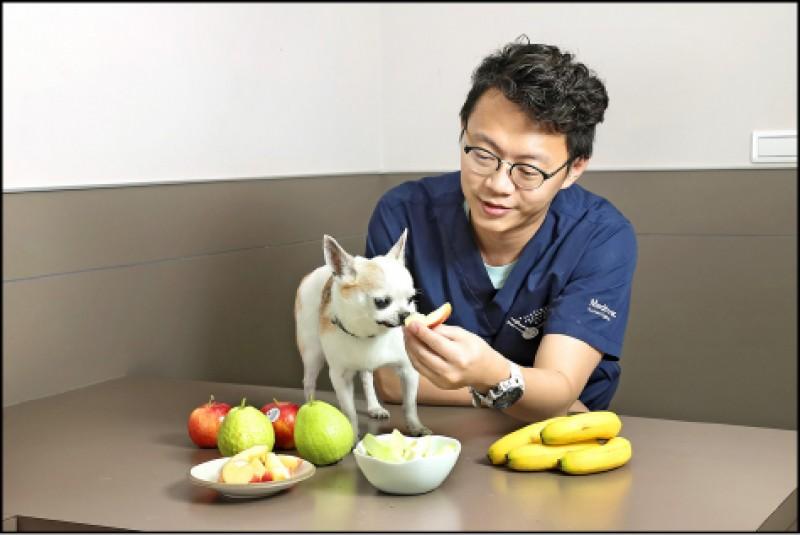 餵食狗狗吃水果之前,一定要注意種類挑選。(記者陳宇睿/攝影)