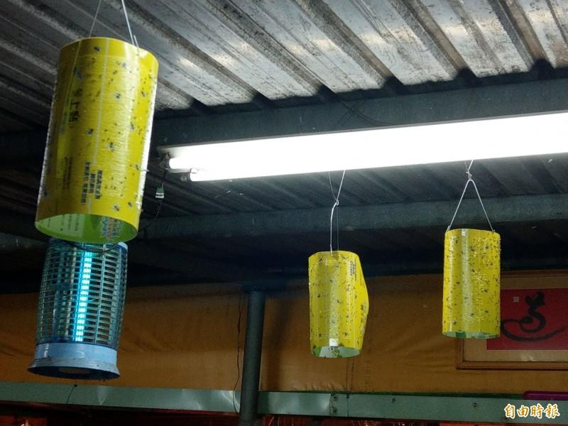 南投撲殺小飛蟻大作戰,有民眾在屋頂燈光旁,吊捕蚊燈、黏蠅板,盼能消滅惱人的小飛蟻。(記者劉濱銓攝)