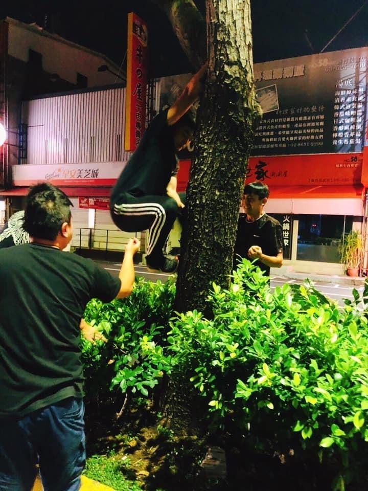 志工們開始爬樹搶救。(取自臉書)