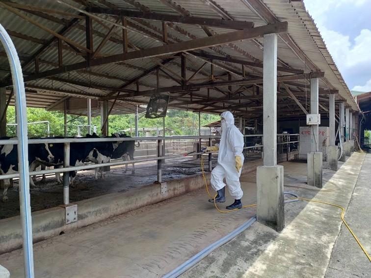 813豪大雨,部分畜禽場傳有淹水或積水情形,南市動保處今派員發送消毒藥劑給3區的135場畜牧場,輔導養畜禽戶緊急進行場區消毒,加強防疫。(圖由南市動保處提供)