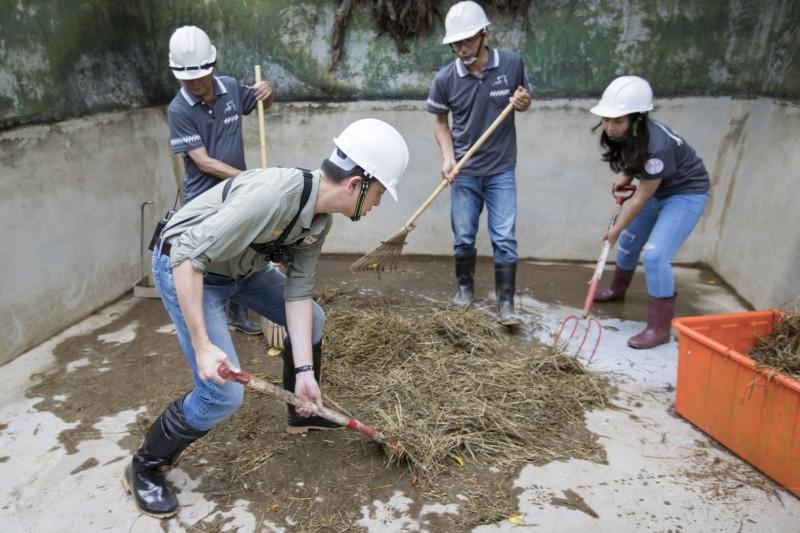 「一日飼育員」林智堅與員工們合力清掃樂樂吃剩的食物及排泄物。(記者蔡彰盛翻攝)