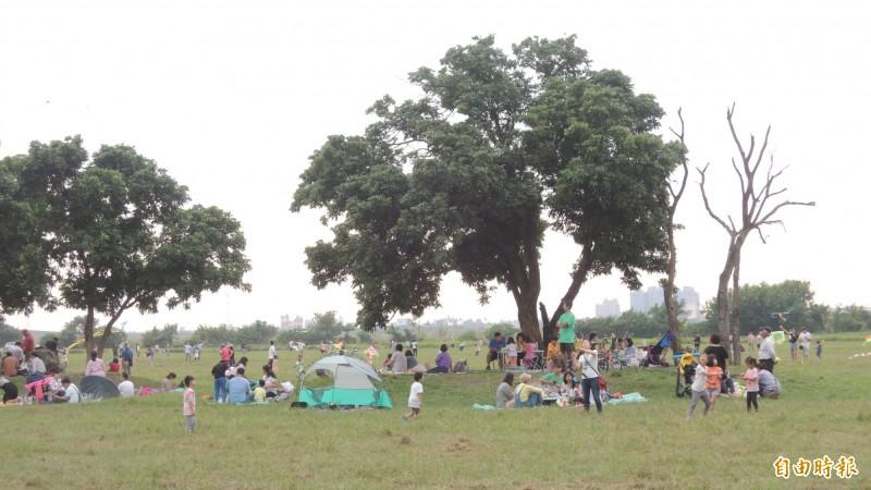每年屏東舉辦國際風箏節的高屏溪河濱公園草地,將是今年國慶煙火的觀眾席。(資料照,記者羅欣貞攝)