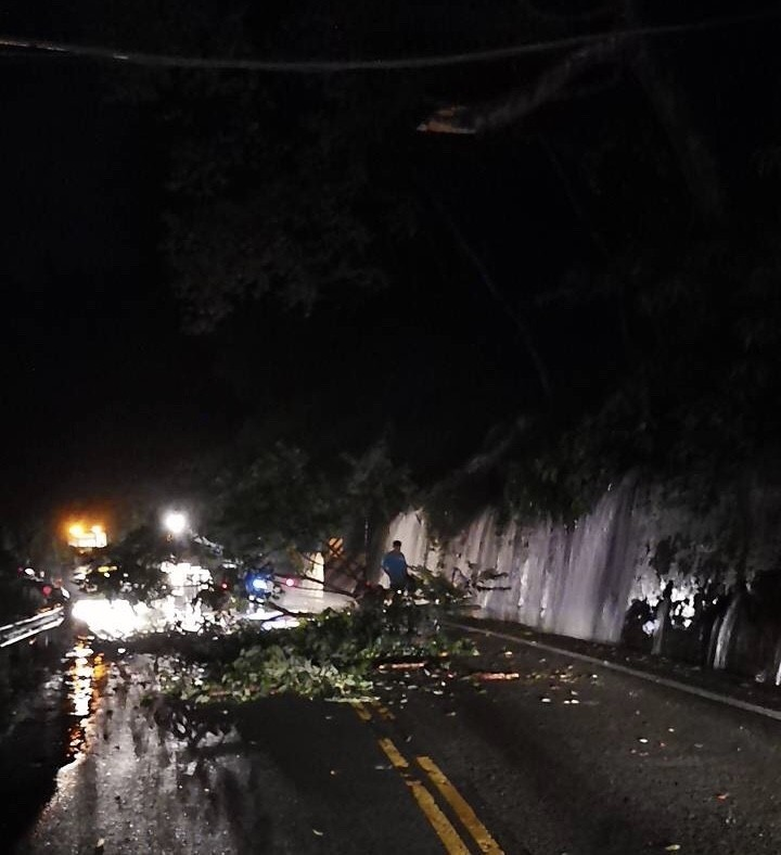 台八線30.5公里樹倒交通受阻 警深夜交管排除