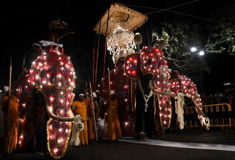 斯里蘭卡佛牙節在首都康堤(Kandy)登場,數十隻裝扮華麗的大象上街遊行。(資料照,法新社)