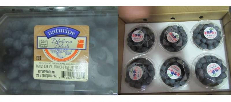 食藥署日前在網路公布邊境查驗不合格產品名單,其中驚見知名美式賣場好市多從美國進口的「NATURIPE藍莓(FRESH BLUEBERRIES)」以及日本進口的「MEIKO鮮藍莓(FRESH BLUEBERRY)」,兩款總計退運、銷毀2901.9公斤。(圖片擷取自食藥署,本報合成)