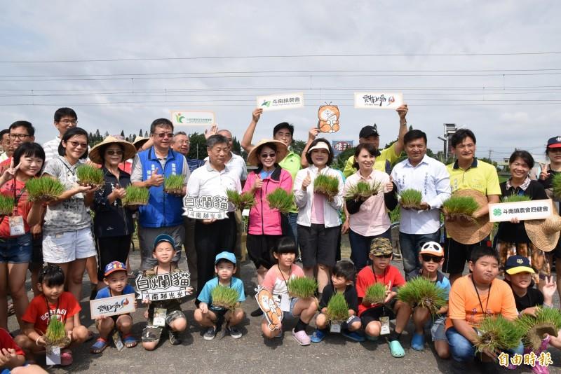 雲林斗南鎮農會彩繪稻田今天插秧,大人小孩一起來體驗。(記者黃淑莉攝)