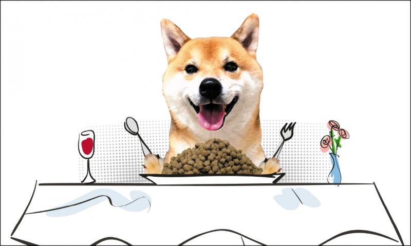 市售狗食乾糧琳瑯滿目,飼主經常只是參考別人的建議購買,但社會上不時會爆發寵物飼料抽查不合格等消息,使飼主心慌慌。(記者劉珮芬/攝影)