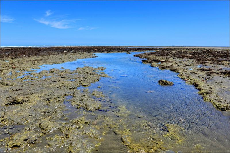 新屋溪口位處觀新藻礁保護區核心區,環保局將在此處設置監測站,成為明年啟用的第二座測站。(市府環境保護局提供)