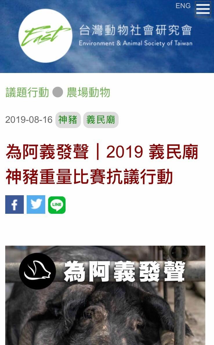 台灣動物社會研究會在網路上發起「為阿義發聲」,抗議新埔義民廟迄今仍舉辦神豬重量比賽,等於是助長虐待動物的歪風。(圖片擷取自網路)