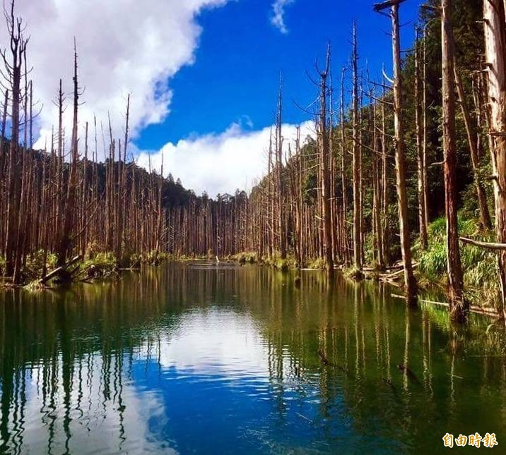 南投及嘉義交界的「水漾森林」,美不勝收,成為山友心中的熱門登山景點。(記者謝介裕攝)