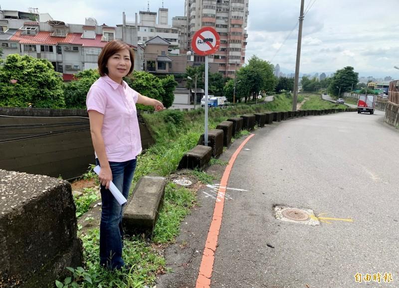 市議員陳淑華表示,市政路延伸工程第一階段從工業一路沿東大坑溪到安和路。(記者張菁雅攝)