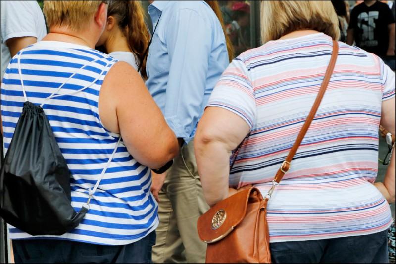 《中英對照讀新聞》Genes, yes, but obesity pandemic mostly down to diet:study 研究:基因有影響,但肥胖流行病主因在飲食