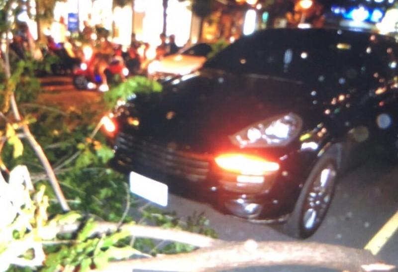 倒塌路樹同時波及計程車後方的保時捷休旅車。(民眾提供)