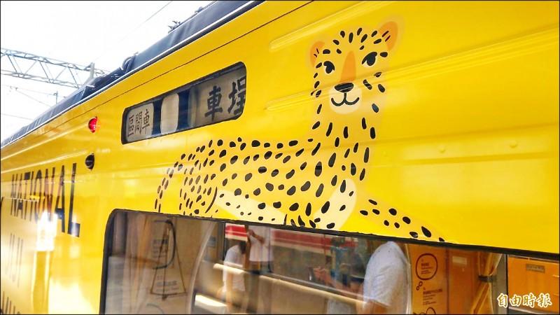 由旅美設計師江孟芝打造的台鐵集集支線彩繪列車20日在樹林車站亮相,但車身彩繪的石虎因特徵不明顯,被外界批為「像花豹」。 (記者鄭瑋奇攝)