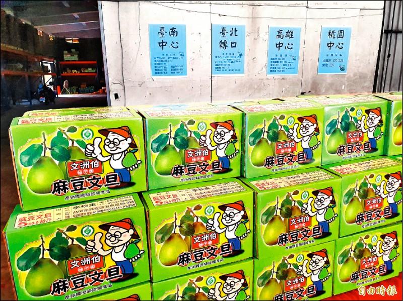 麻豆文旦全面採收,台南郵局在麻豆成立上收中心提供收寄文旦等服務,也整合網路行銷。(記者王涵平攝)
