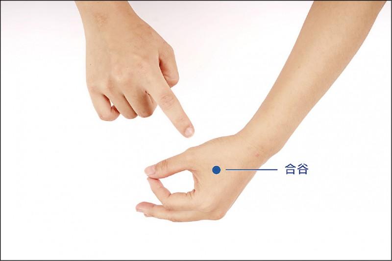 合谷:將拇指與食指併攏,此時在兩手指間會有肌肉隆起,於最高點處。 (照片提供/洪國峯)