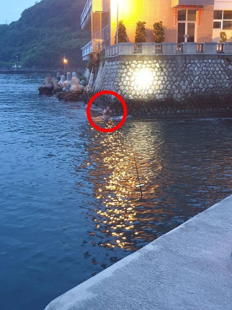 蔡男(紅圈者)在一港口安檢所旁跳進高雄港海域。(記者洪定宏翻攝)