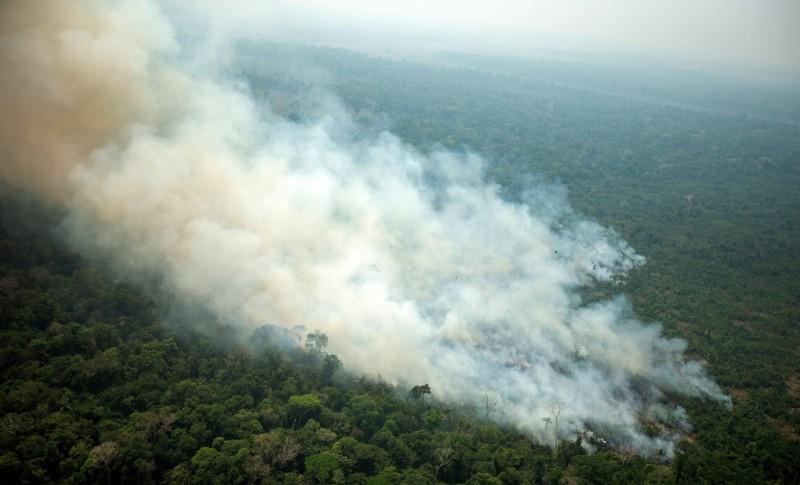 亞馬遜雨林野火災情嚴重,引發全球關注,巴西總統波索納洛宣布將調派軍隊前往協助。(歐新社)