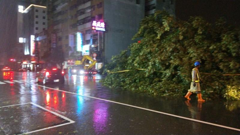 輕颱白鹿肆虐高雄 路樹倒塌140多件
