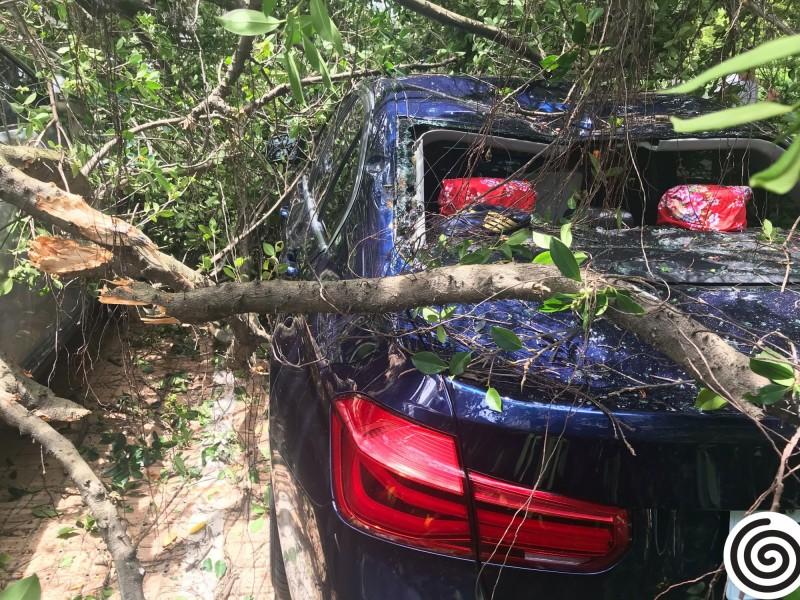 楊慶煌轎車遭毀。(楊慶煌提供)