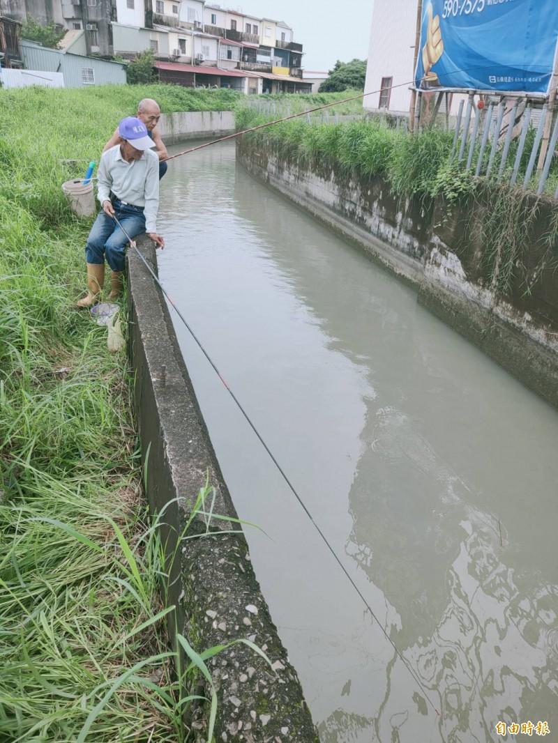 真的有魚嗎? 嘉南大圳水道竟成垂釣點