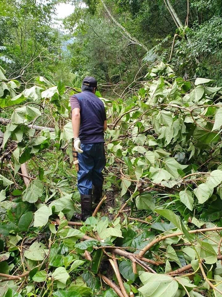 白鹿颱風遠離 雪霸處明開放部份登山路線