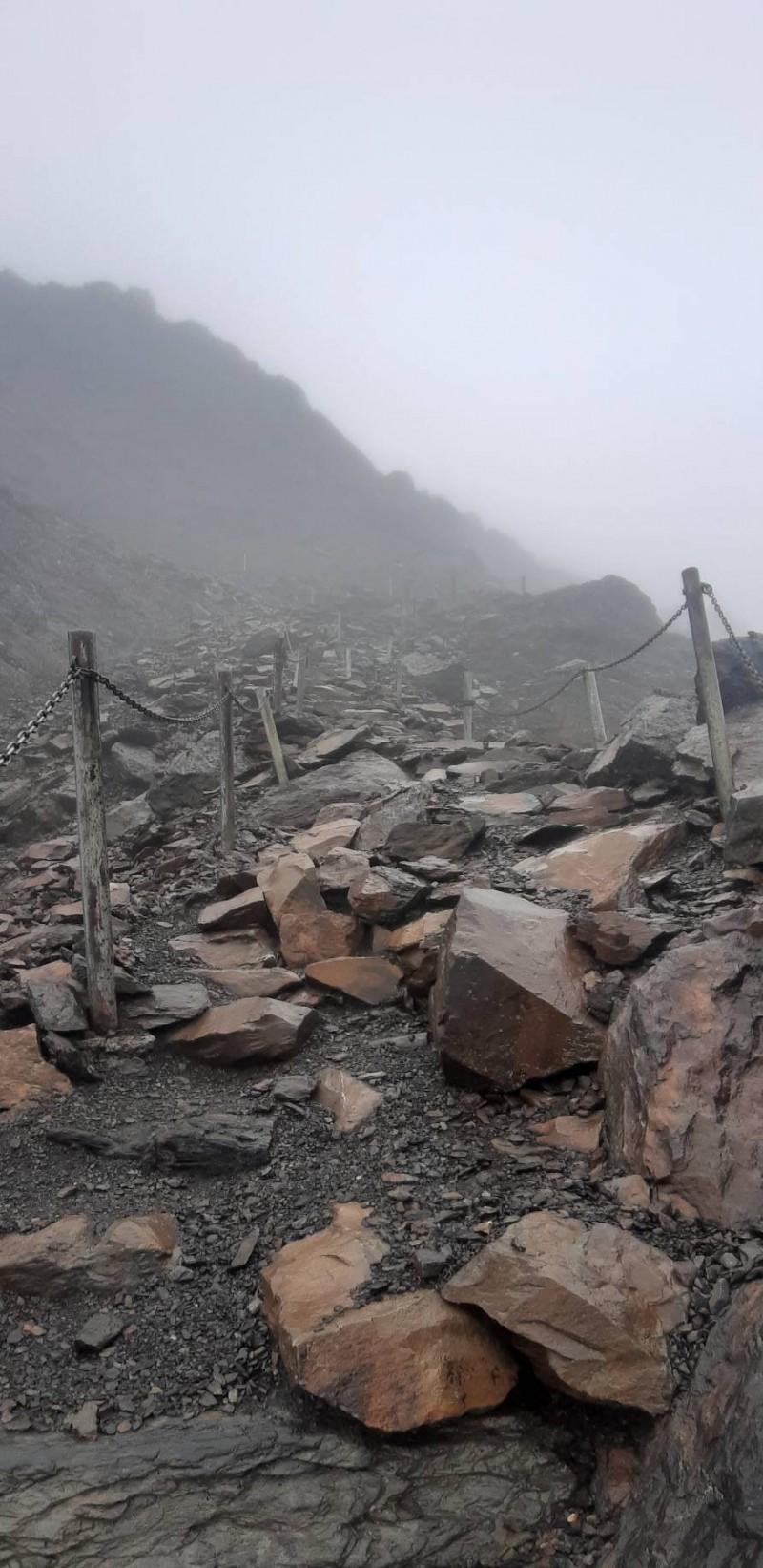 白鹿颱風過境,颳起十四級強風,玉山園區步道出現零星損壞。(玉管處提供)