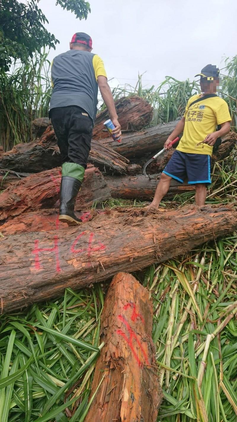 走了颱風來了山老鼠! 偷開推土機下溪被逮