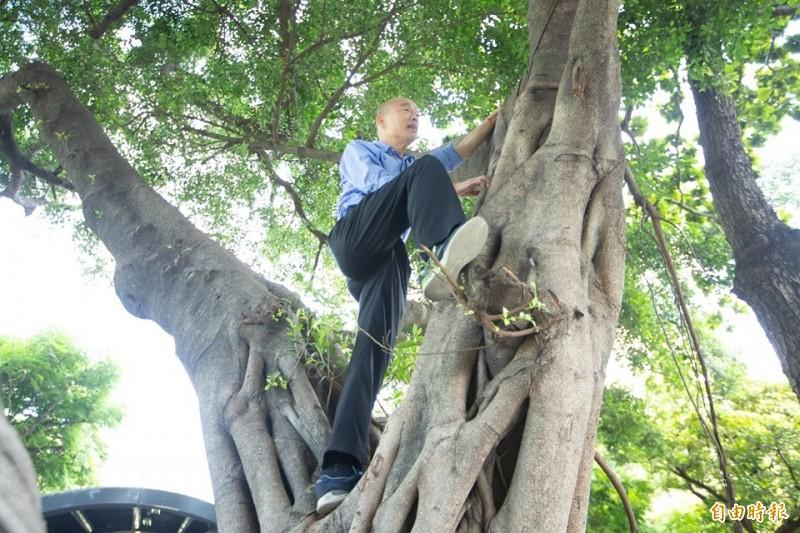 韓國瑜(見圖)7月24日爬樹視察登革熱疫情,引發社會輿論批評。(資料照,記者黃旭磊攝)