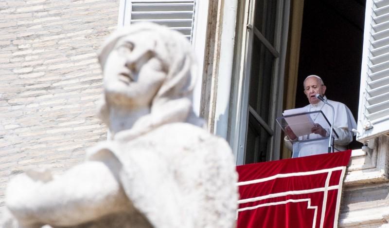 亞馬遜雨林危機 教宗籲全球合作救「肺」
