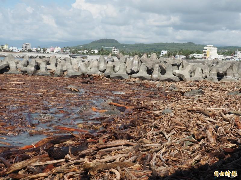富岡漁港港嘴外仍有成堆漂流木。(記者王秀亭攝)