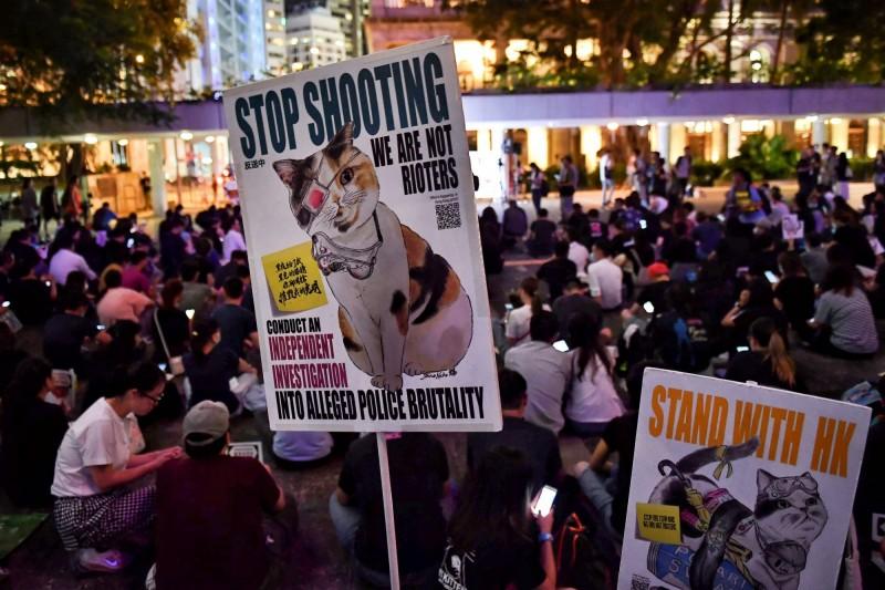 香港動物醫護界發起「向催淚彈說不」集會,現場有多人舉著寫有停用催淚彈的動物圖案標語。(美聯社)