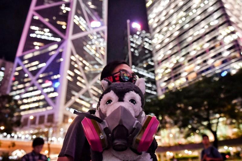 一名男性參加者帶上防毒面具,以及帶著防毒面具的狗布偶,出席向「催淚彈說不」集會。(美聯社)