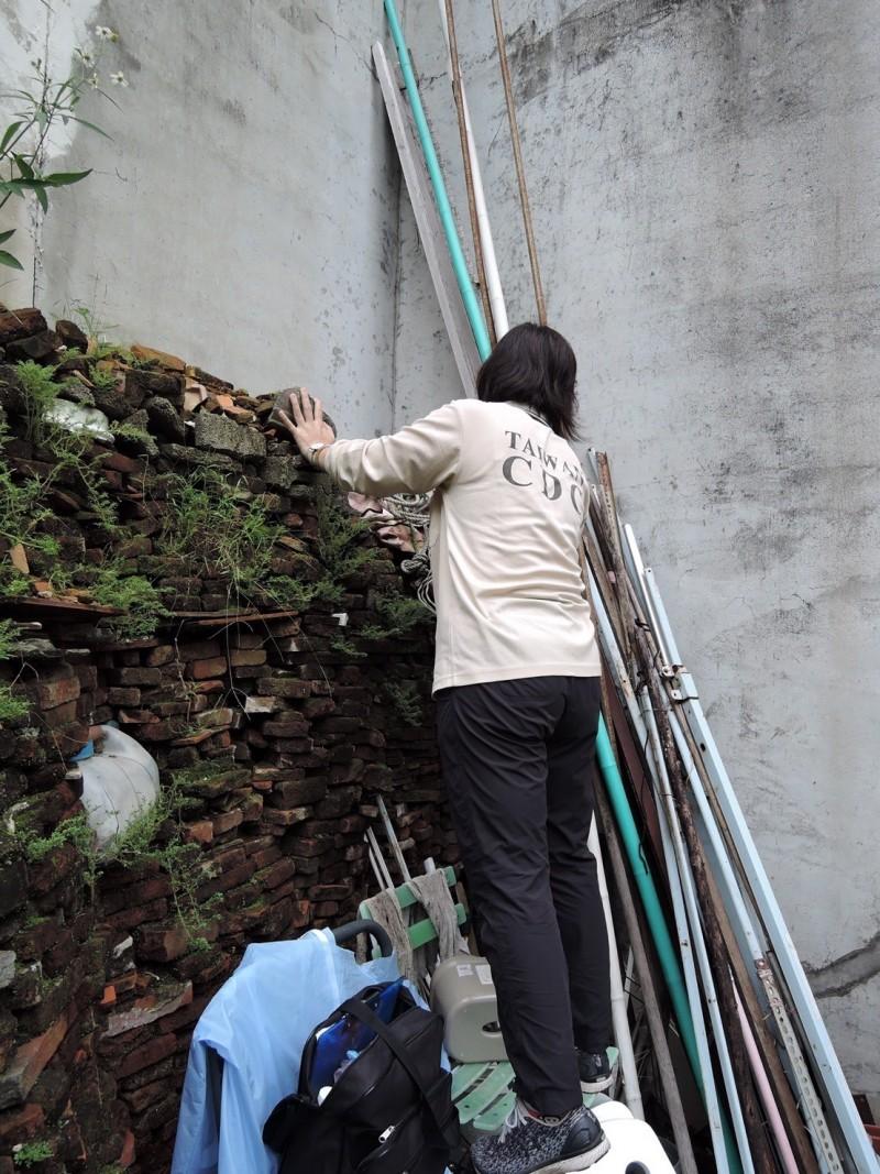 台南市目前本土登革熱為24例,境外移入30例。(記者王捷翻攝)