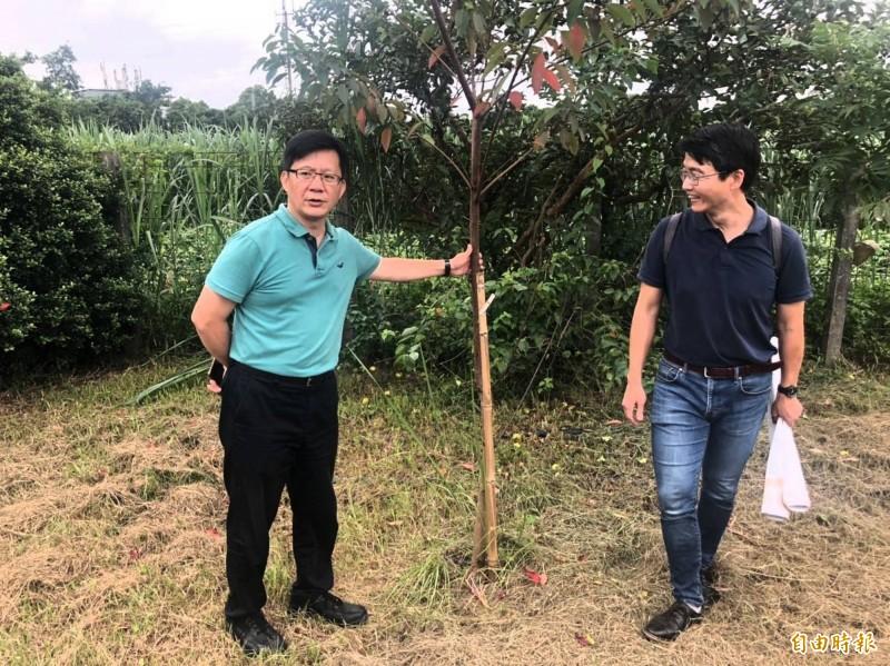 張廖萬堅(左)、蔡智豪(右)參觀台中都會公園培育成功的原生苗木。(記者黃鐘山翻攝)