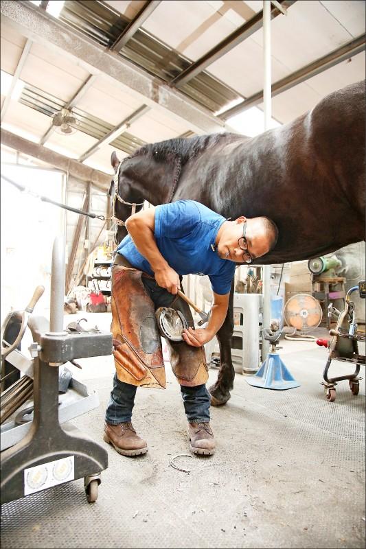 馬蹄像人類指甲會自然增生,必須釘上蹄鐵保護馬蹄並定時修整,釘蹄師就是專責這一行的職人。(記者沈昱嘉/攝影)