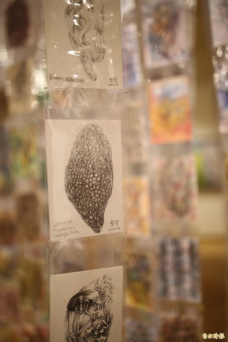 林磐聳過去10多年來持續用明信片書寫台灣家書,至今累積超過3千張。(記者邱芷柔攝)