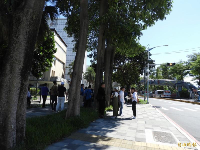 台灣藝術大學周邊環境改造工程完工,留設寬敞的人行步道,形成綠色廊道。(記者賴筱桐攝)