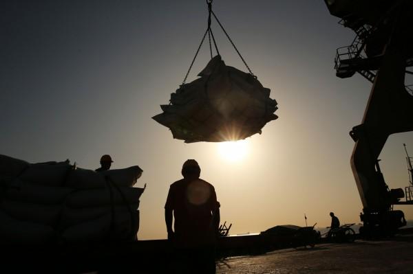 中國開放進口阿根廷豆粕 恐激怒自家壓榨商
